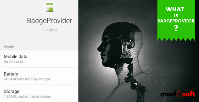 What is BadgeProvider Android App?