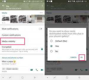 Set Media Visibility For Individual Chats